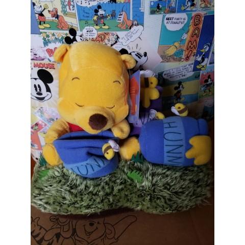 Disney Winnie The Pooh 80th Anniversary souvenir (Limited edition)