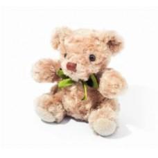 Teddy Bear Soft Toys